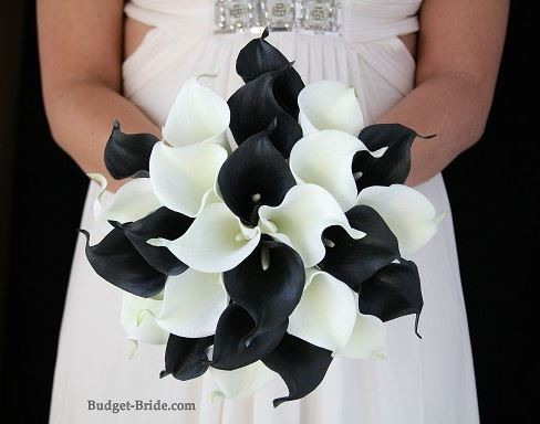 Black and White Calla Package