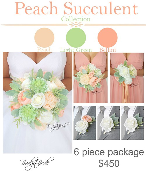 Peach Succulent Package